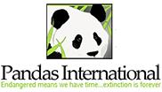 panda-international