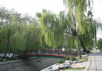 Langley Park Beijing