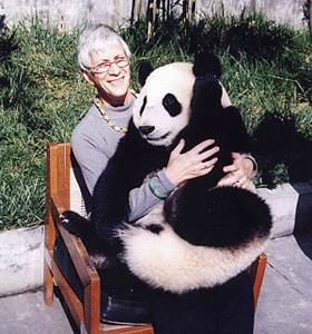 traveler with panda